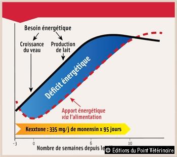 PÉRIODE D'ACTION DU BOLUS KEXXTONE®