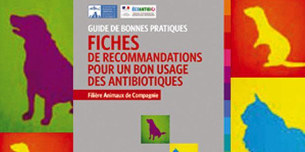 guide de bonnes pratiques en antibiothérapie vétérinaire