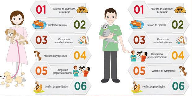 Infographie qualité de vie