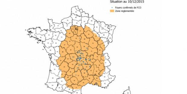 carte représentant les zones réglementées en jaune, et les foyers en bleu