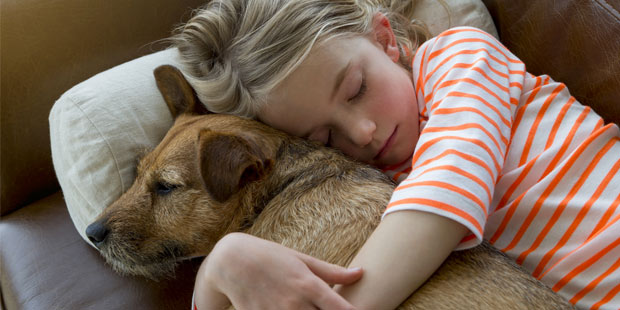 Enfant faisant un câlin à son chien