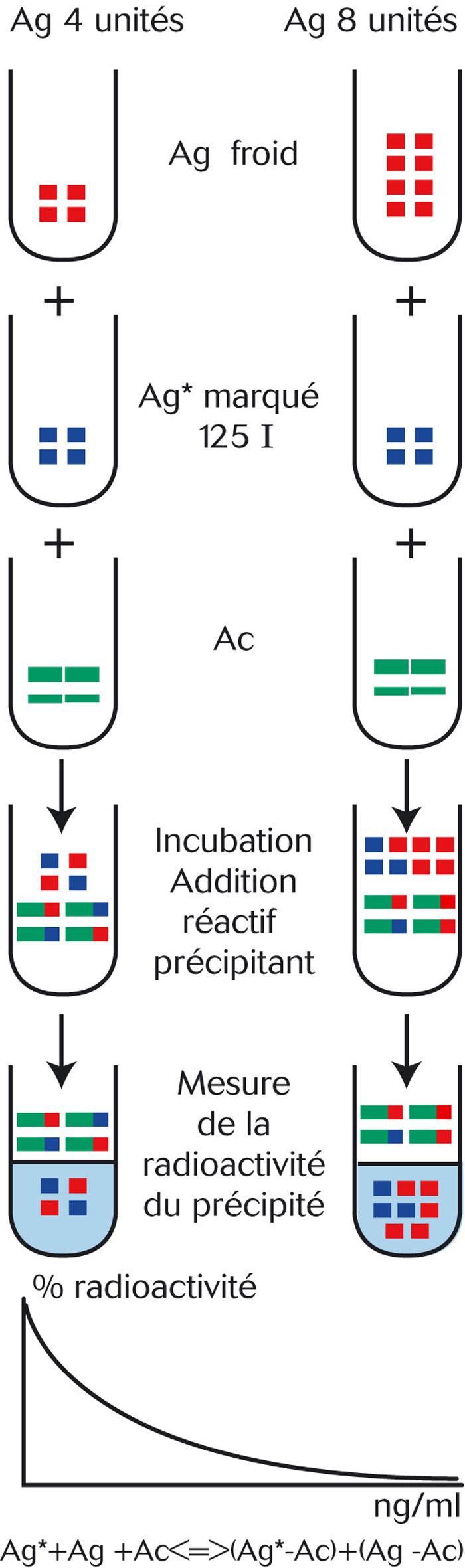 Méthode de radio-immunologie (anticorps polyclonaux)