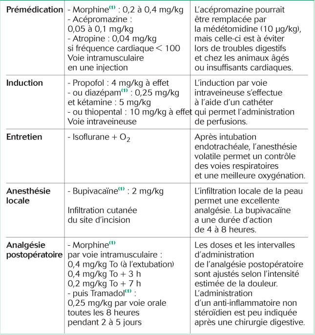 Exemple de protocole analgésique: douleur modérée à sévère