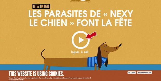 Vidéo Merial de sensibilisation au parasitisme des animaux de compagnie