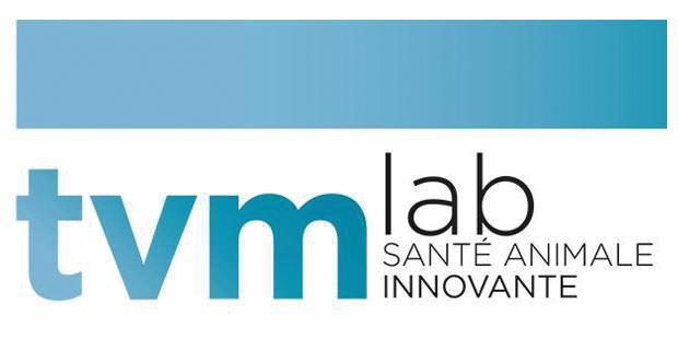 logo de TVM