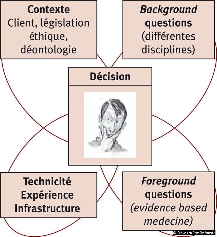 Figure 2: Composantes de la prise de décision du praticien