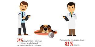 Infographies sur le comportement animal