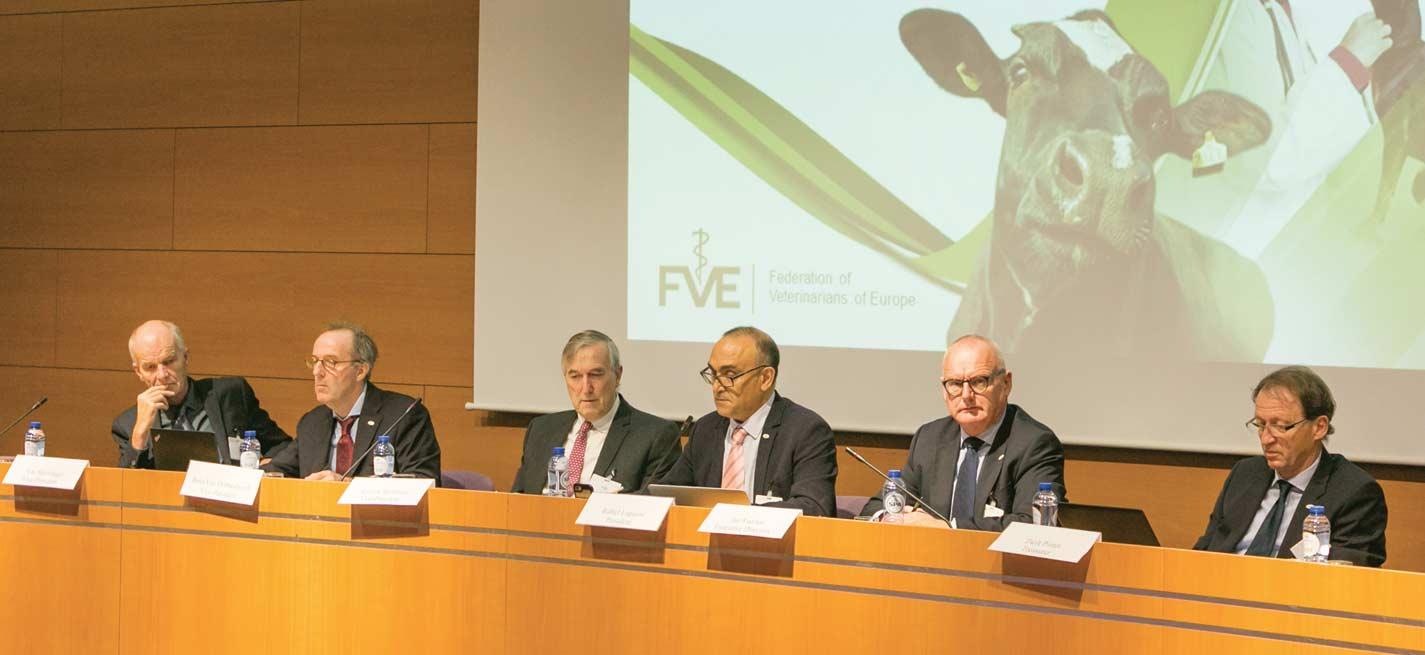 Bureau de la Fédération vétérinaire européenne (FVE). De gauche à droite: Arne Skjoldager (Danemark), Rens van Dobbenburgh (Pays-Bas), Andrew Robinson (Royaume-Uni), Rafael Laguens (Espagne, président), Jan Vaarten (directeur exécutif), Zsolt Pintér (Hongrie)