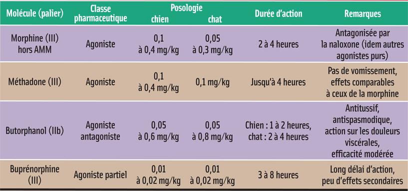 MOLÉCULES DE PRÉMÉDICATION: ANALGÉSIQUES OPIACÉS