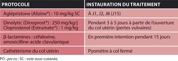 TABLEAU 3Traitement médical du pyomètre