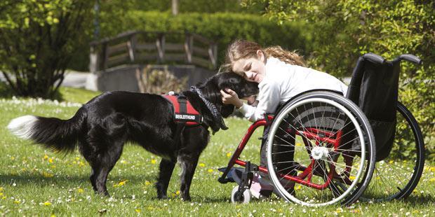 Enfant sur fauteuil roulant avec un chien