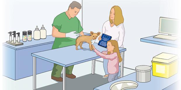 vos tarifs en canine