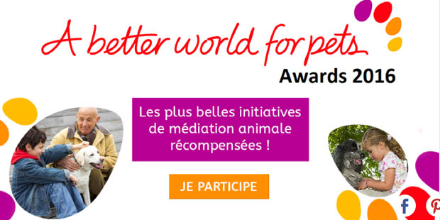 A better world for pets award
