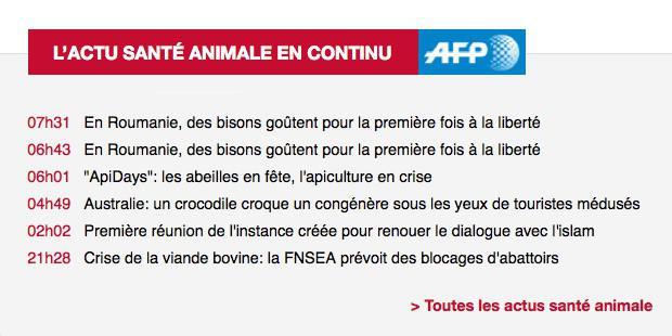 fil info AFP