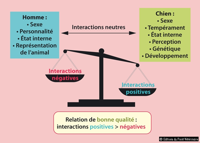 FIGURE 3La relation interspécifique : balance des interactions positives et négatives(1)