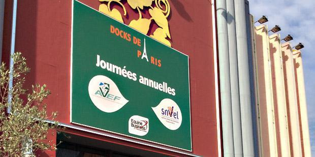 Docks de Paris, Journées annuelles Avef