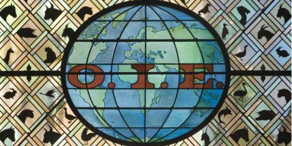 Visuel de l'OIE