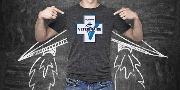 veterinaire, ailes