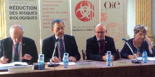De gauche à droite : David Nabarro (ONU), Bernard Vallat et Brian Evans (respectivement directeur général et directeur général adjoint de l'OIE), Florence Fuchs (OMS).