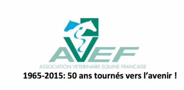 L'Avef lance un appel à candidatures pour ses prix et communications