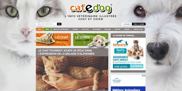 Home du site Catedog