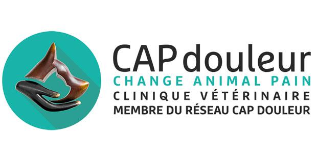 logo CapDouleur