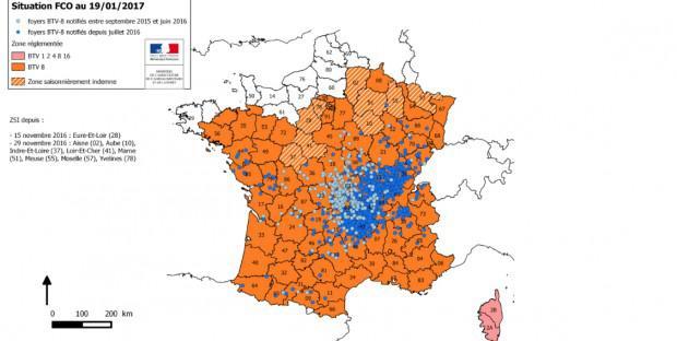 Carte des zones réglementées vis ) vis de la FCO