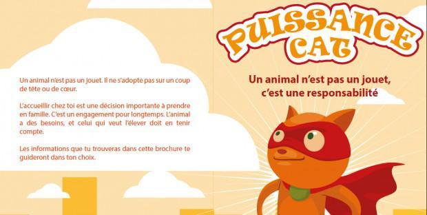 concours puissance cat