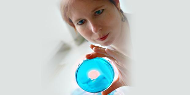 antimicrobien chez l'animal
