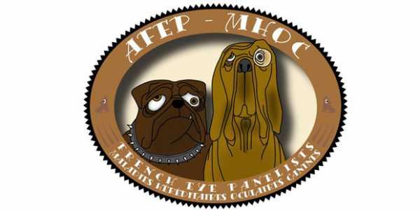 Les tares oculaires font l'objet d'un dépistage structuré, qui repose sur trois acteurs : la société centrale canine, les clubs de races et les vétérinaires adhérents à l'association French Eye Panelists.