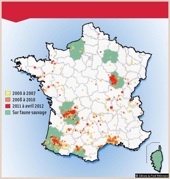 DISTRIBUTION DE LA TUBERCULOSE BOVINE EN FRANCE, DANS LES ÉLEVAGES ET LA FAUNE SAUVAGE, DE 2000 à 2012