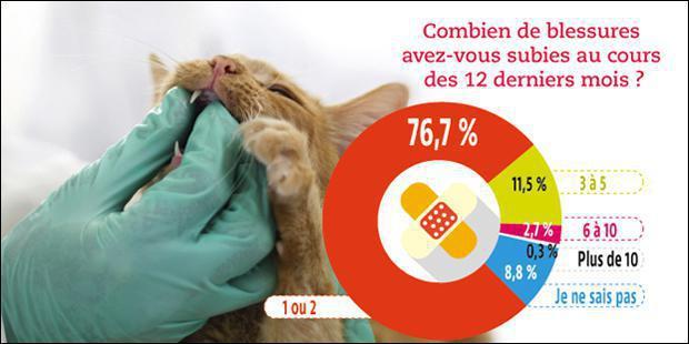 infographie risque metier veterinaire