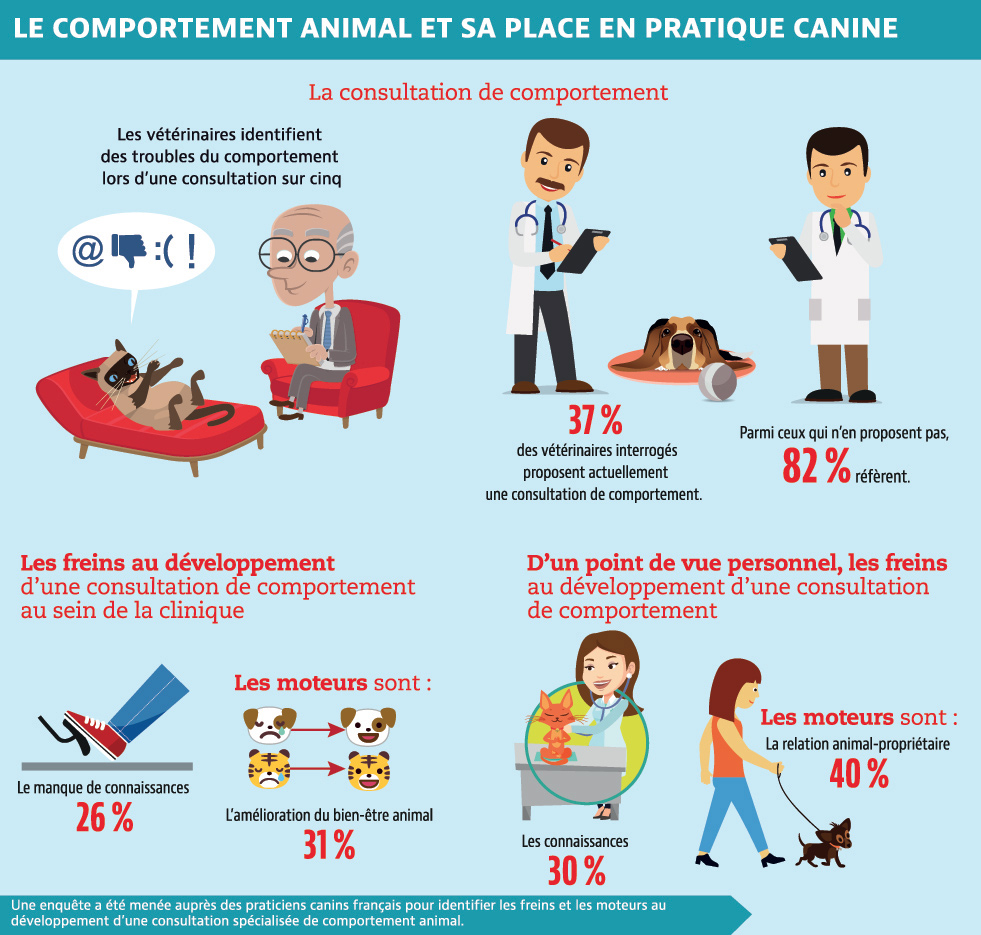 Le comportement animal et sa place en pratique canine