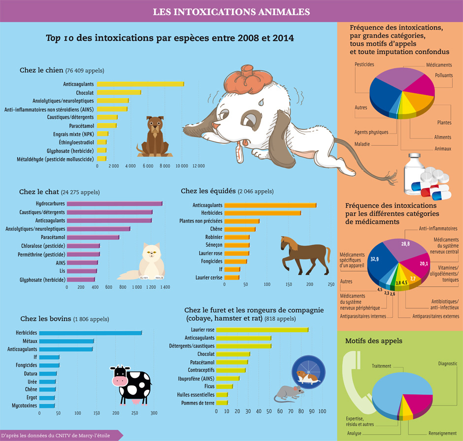 Les intoxications animales