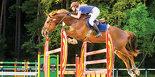 Cavalier sur un cheval