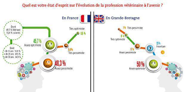 infographie enquête profession