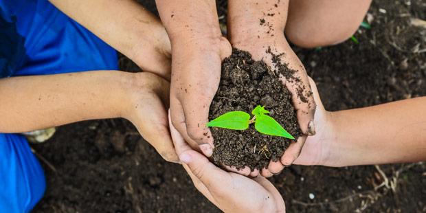 Les états généraux de l'alimentation auront lieu cet été.Plusieurs mains tiennent une poignée de terre où pousse une jeune plante