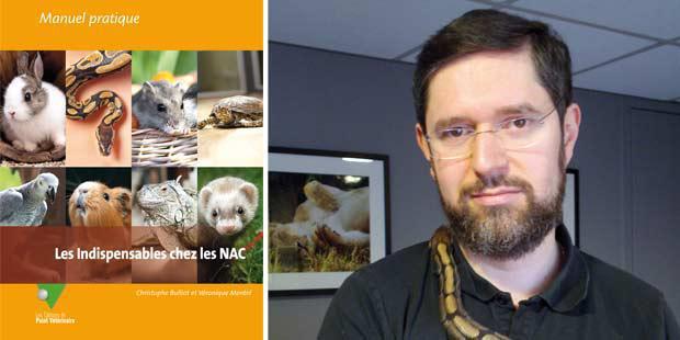 Les indispensables chez les NAC. Christophe Bulliot.