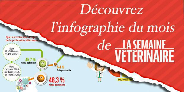 infographie enquete profession