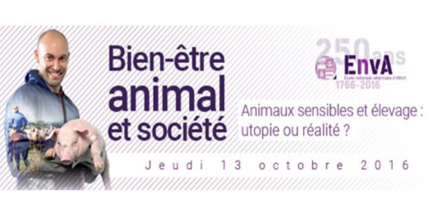 Le colloque «Animal et Société» à Alfort