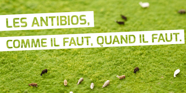 Campagne antibios