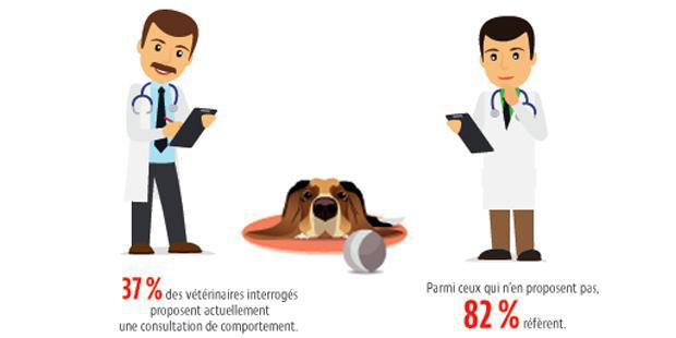 Infographies sur le comportement animal