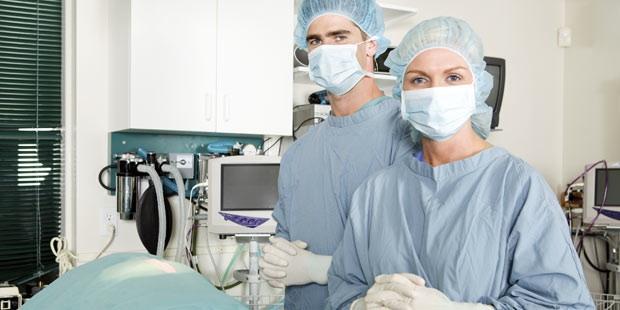 clinique vétéirnaire