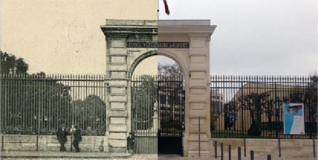 Ecole Nationale Vétérinaire d'Alfort : 250 ans