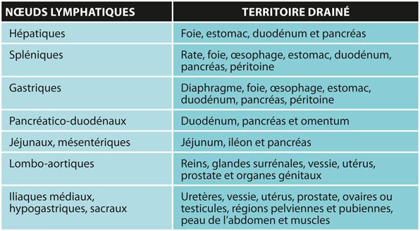TABLEAU 1Principaux nœuds lymphatiques