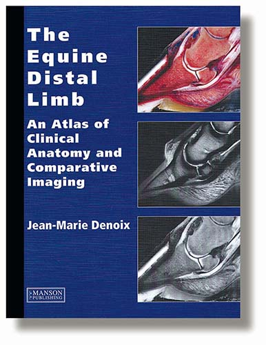 The equine distal limb