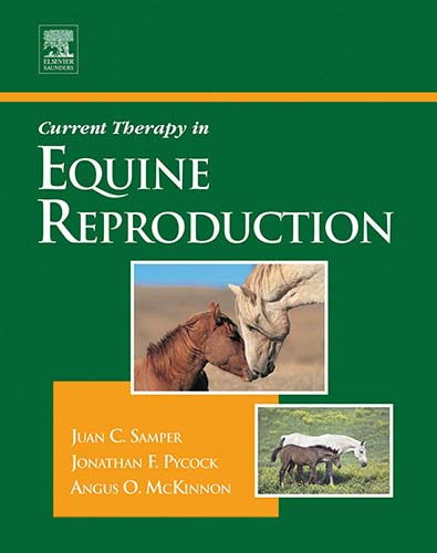 Current therapy in equine reproduction