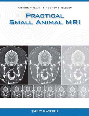 Practical small animal MRI