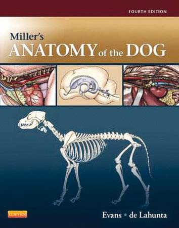 Miller's Anatomy of the Dog - 4e edition
