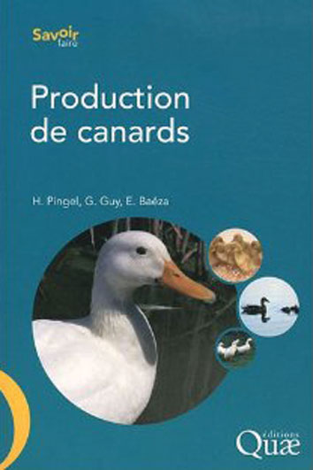 Production de canards